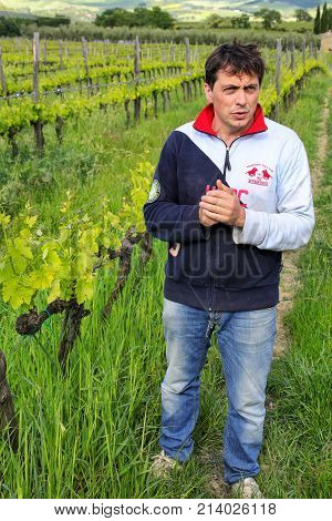 Montalcino, Italy-may 9: Unidentified Man Stands In His Vineyard On May 9, 2017 Near Montalcino, Val