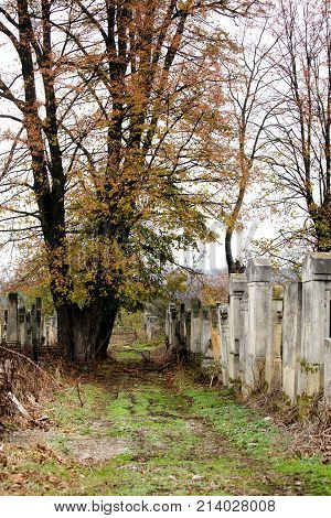 Old Jewish Cemetery Religious Image Photo Bigstock
