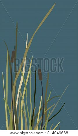 Bush of Swamp Reed on a Lake. vector Illustration