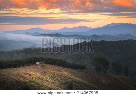 Beautiful view of morning mist and hill at Na Muen town in Nan Thailand