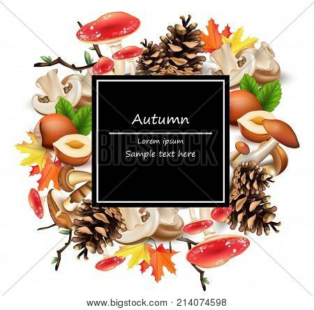 Forest card decor with mushrooms, nuts, leaves, pinecone Vector. Autumn background