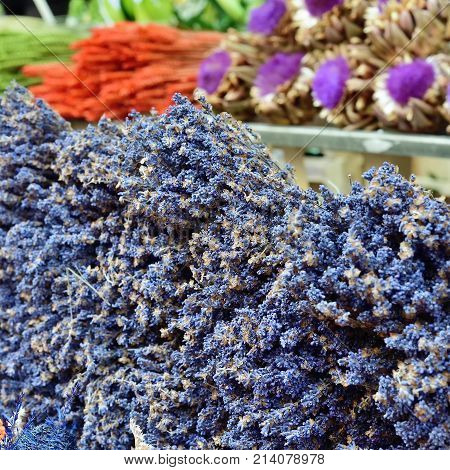 Beautiful bouquets of lavender flowers for sale on the street of the small village Vaison la Romaine Provence France. Small depth of field