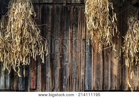 Drying Sheaves With Beans