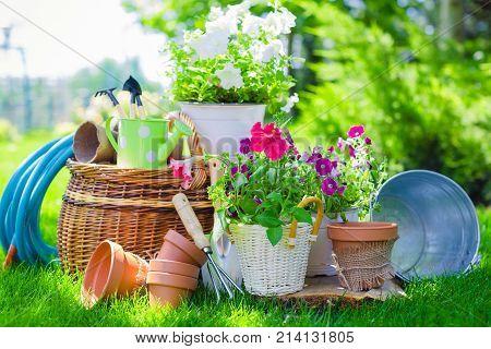 Garden flowers utensil gardening utensils pots green