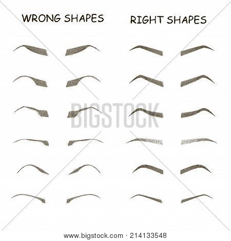 female eyebrows vector elements. How to paint woman eyebrows. Trendy makeup brows scheme. Vector illustration. Wrong and right shapes