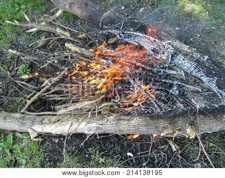A bonfire from dry branches on a clearing in a forest - top view. Charred firewood yellow-orange flames smoke green grass around in a clear spring-summer sunny day