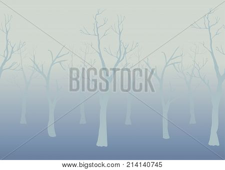 Winter Trees Background. Winter landscape with trees fog. Cloudy Foggy Day.