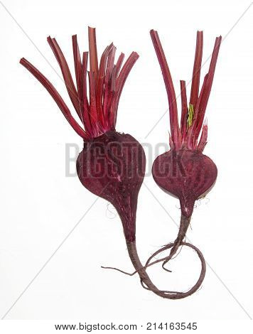 Fresh Beetroot on an Isolated White Background