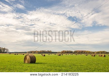 Rolls of hay dotting a green field with fall colors and a blue sky with clouds in the background