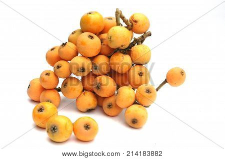 fresh picked loquat isolated on white background