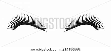Vector black beautiful long eyelashes symbol couple of women eye lashes. Eyelash logo for beauty salon advertising template