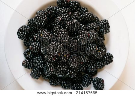 top view of mulberry on white background. Fresh organic fruit rich in nutrients and antioxidants concept.