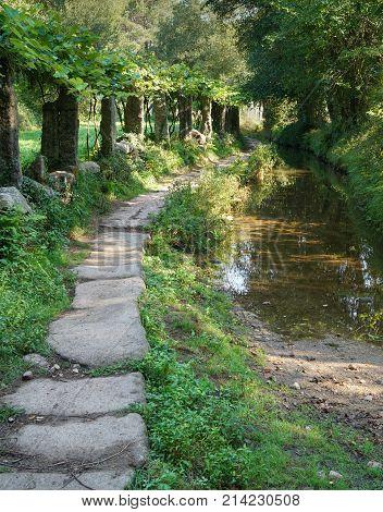 Pilgrim trail between Tui and O Porrino on the Camino de Santiago trail, Spain
