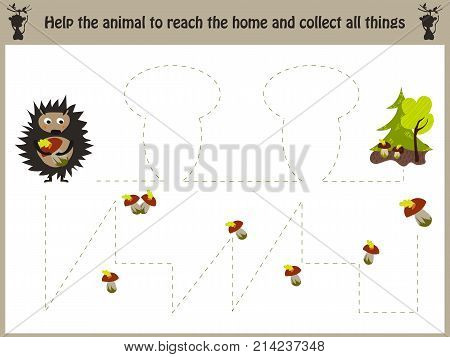 Cartoon illustration of education. Matching game for preschool kids trace the path of a hedgehog in the forest and collect all the mushrooms. Education and games. Learn handwriting. illustration