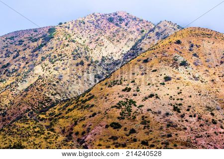 Desolate landscape with chaparral shrubs on a hillside taken at the Mojave Desert in Cajon, CA