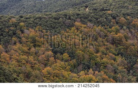 The colors of Autumn appear on the mountain, corollarizing it