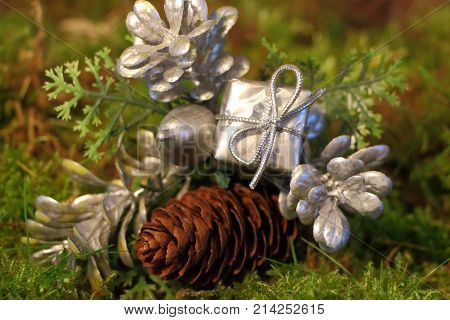 Silvery gift leaf and pine cone as decoration for Christmas