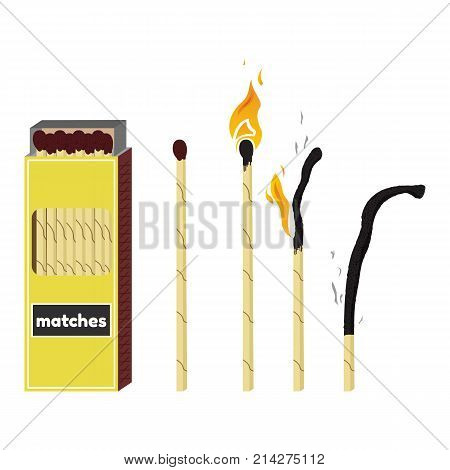 Vector illustration of long fireplace matches. Burning and burnt match sticks