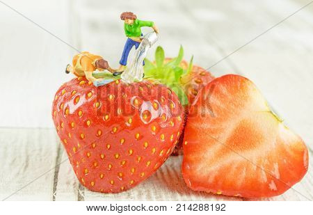 Food hygiene concept of a miniature figure cleaning a strawberry.