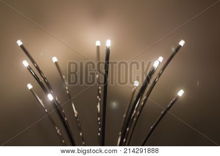 abstract background image of the diode small bulbs on thin legs direction in different directions creativity