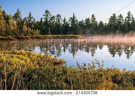 Michigan Misty Morning Wilderness Forest Background. Mist rises off a pond in the wilderness of Tahquamenon Falls State Park in the Upper Peninsula.