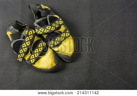 Yellow Climbing Shoes.