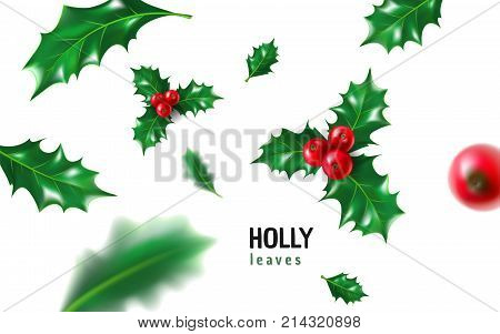Realistic holly ilex with berry and leaves mistletoe set. Christmas new year holiday celebration symbol decorations. 3d realistic vector illustration isolated on white background.