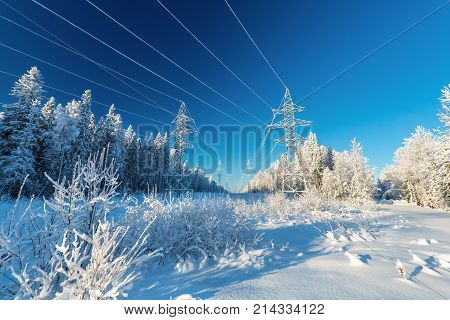 The overhead electric line over blue sky. Electrical wires of power line or electrical transmission line covered by snow in the winter forest.