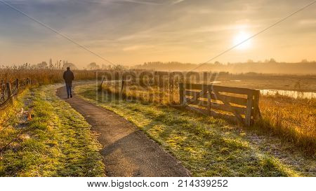 Walking Track In Misty Agricultural Polder