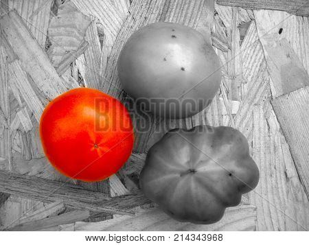 Tomatoes on a table in contrast colors green, red, black and white. Harvest of autumn background or texture for fall theme. Symbol or sign of odds, vary and discrepancy. Flat layout view