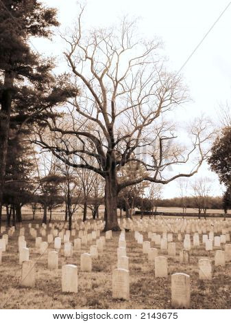Stones River National Cemetery In Murfreesboro