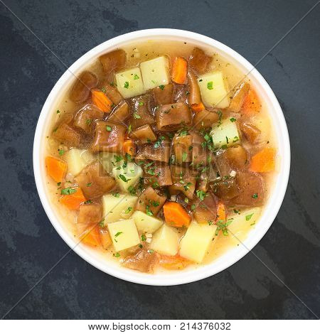Traditional Chilean Estofado or Guiso de Cochayuyo (lat. Durvillaea antarctica) a vegan stew of bull kelp potato carrot and onion served with parsley in bowl photographed overhead on slate with natural light