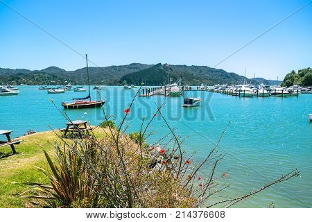 Whangaroa Harbour and marina Far North District Northland New Zealand NZ - moored boats and grassy area for picnic bench