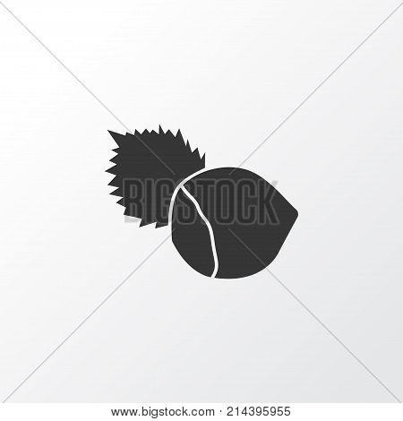 Hazelnut Icon Symbol. Premium Quality Isolated Filbert Element In Trendy Style.