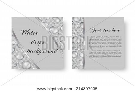 Organic background design for greeting card, leaflets with bright drops of dew for environmental protection measures