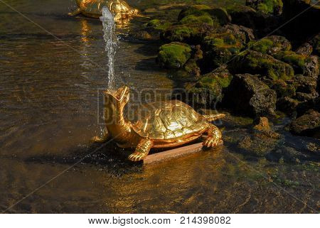 Saint Petersburg, Russia - August 7, 2007: Turtle fountain at Peterhoff Palace in St. Petersburg Russia
