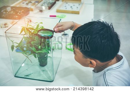 Asian Child Exploring Plant With Magnifying Glass. Vintage Tone.