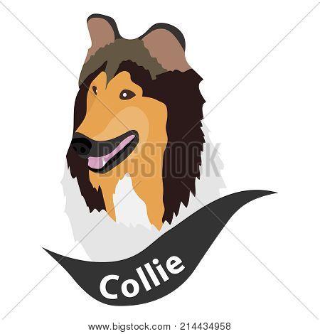 Scottish Shepherd Dog dog head dog. Flat design vector illustration vector.