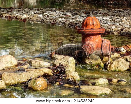 Orange fire hydrant sticking out of creek