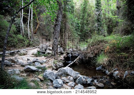 A hiking trek to Caledonia waterfall along a small river stream near Platres central Cyprus