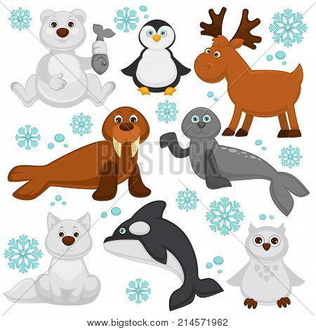 Polar animals and arctic fish cartoon characters. Vector funny isolated icons of polar owl, reindeer, orca killer whale and seal or walrus, north pole white bear and penguin with snowy fox