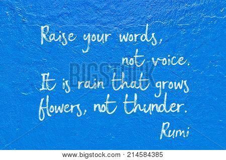 Not Voice Rumi