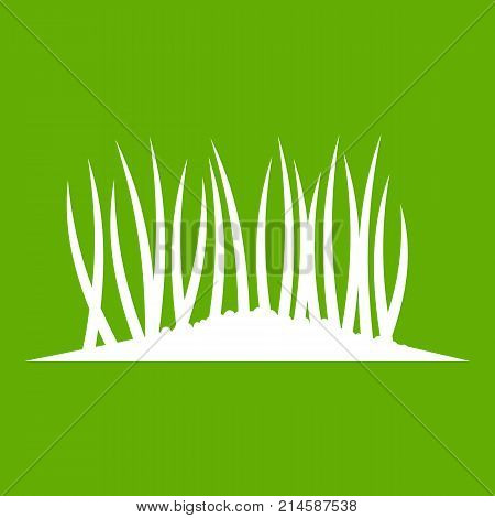 Grass on ground icon white isolated on green background. Vector illustration