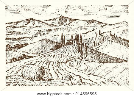 engraved hand drawn in old sketch and vintage style for label. fields background and cypress trees. harvesting and haystacks. Rural landscape of vineyard or rustic houses