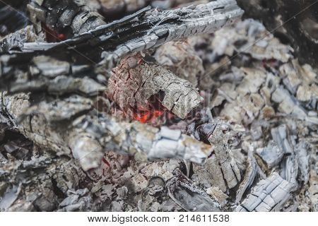 Remains of wood coal and ashes after the combustion of firewood.Burned charcoal and ash from fire.Coal and wood ashes