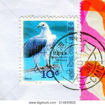 GOMEL, BELARUS, 19 NOVEMBER 2017, Stamp printed in HONG KONG, China shows image of the White-bellied Sea Eagle, circa 2017.