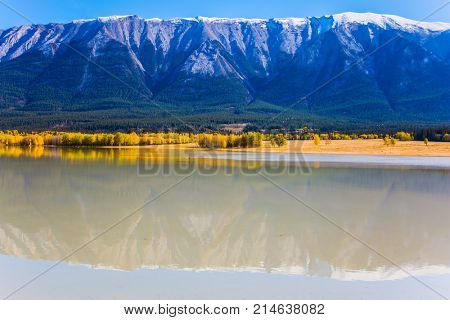Rocky Mountains are reflected in the smooth water of the lake. Warm September. On the shores of the Abraham lake there are autumn forests. Concept of ecological and active tourism