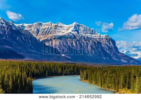 On coast of the Abraham lake the autumn multi-color woods. Indian summer in the mountains of Canada. Concept of ecological and active tourism