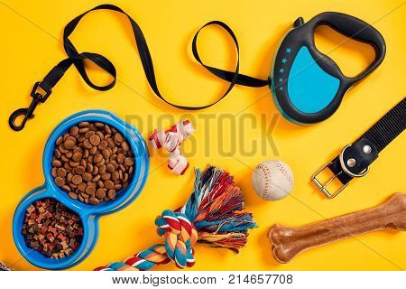 Dog accessories on yellow background. Top view. Pets and animals concept. Still life. Copy space. Flat lay