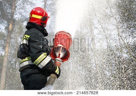 Belarus Gomel 04/06/2017 extinguishing forest fire.Belarus Gomel 04/06/2017 Firefighter extinguishes a fire.Forest fire. Fighting with fire.